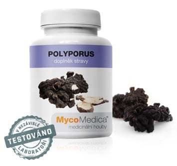 Polyporus Mycomedica