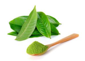 Matcha - nejlepší zelený čaj
