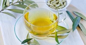 Extrakt z olivovníku nejen pro léčbu chřipky a nachlazení
