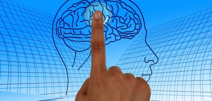 Úbytek mentálních funkcí spojené se stárnutím může být zmírněn správnou dietou