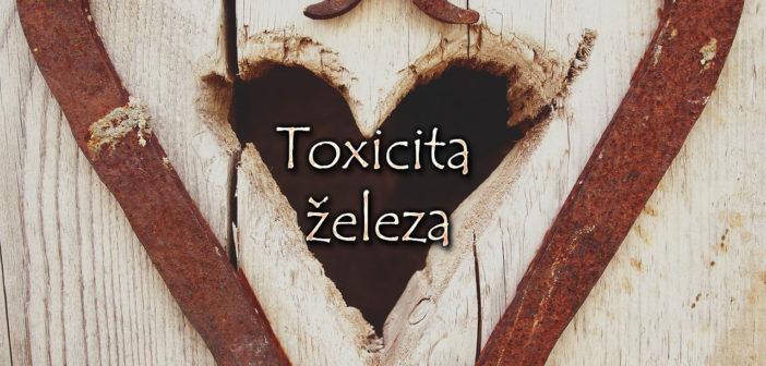 Toxicita železa
