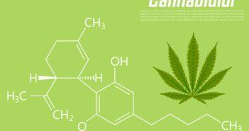 Kanabidiol (CBD) jako potenciální protirakovinné léčivo