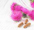 Použití silybinu v lékařském prostředí: účinnost a návrhy