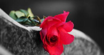 """""""Zprávy o mé smrti jsou značně přehnané"""" – aneb – naučte se žít s tím, že jednou zemřete"""