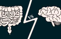 Ukrývají naše střeva nové léky na onemocnění mozku?