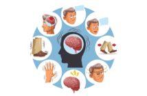 Zdravý mozek s doplňkem Neuro-mag (threonát hořečnatý)
